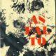 Tapa Asfalto 2