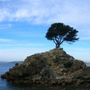 Isla Perdida