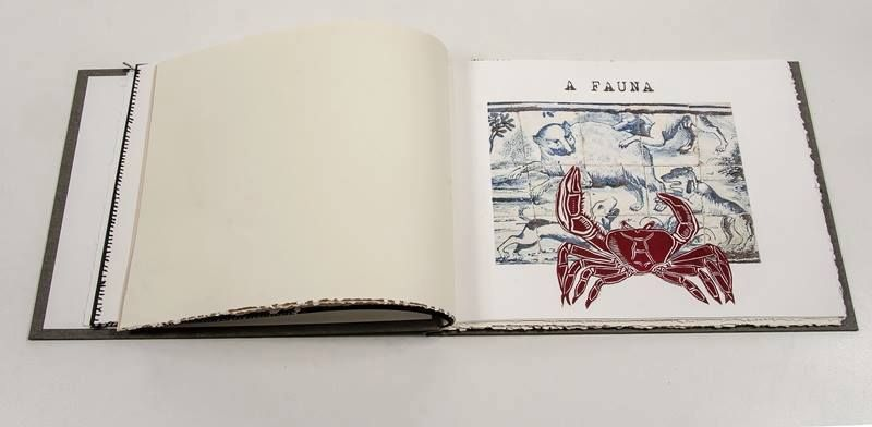 Rosana Paulino - Historia Natural Giunta