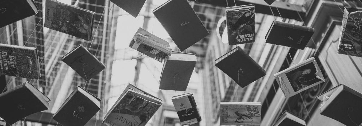 Pexels-Goldgel-Libros